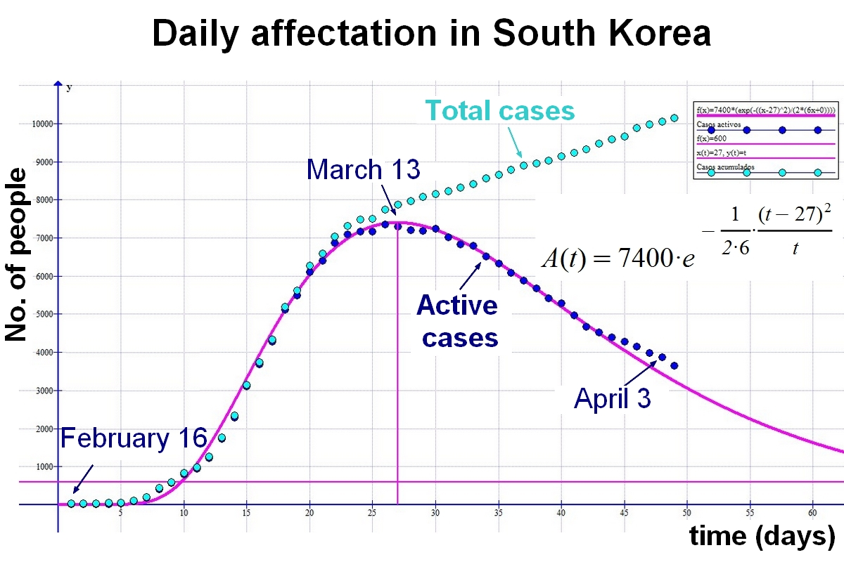 Daily affectation in South Korea. Graph of coronavirus evolution in South Korea